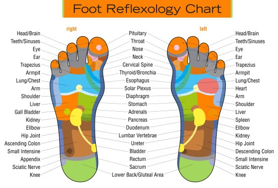 Image result for free photo of reflexology