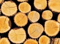 wood_2571x1894